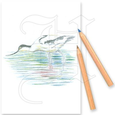 Colouring Set By The River 1