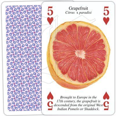 FRUITS OF THE WORLD PLAYING CARDS 2 1