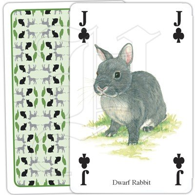 PETS PLAYING CARDS 4