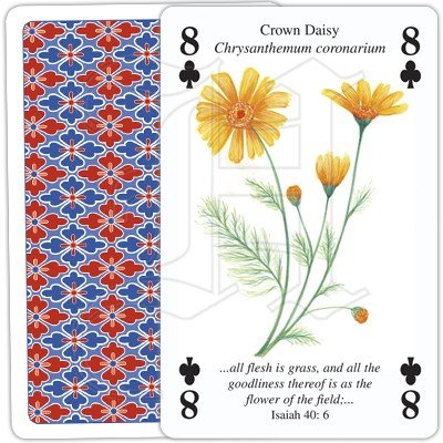 PLANTS OF THE BIBLE PLAYING CARDS 2