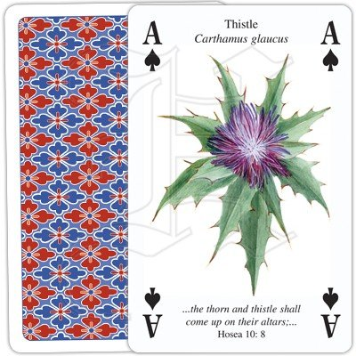 PLANTS OF THE BIBLE PLAYING CARDS 3