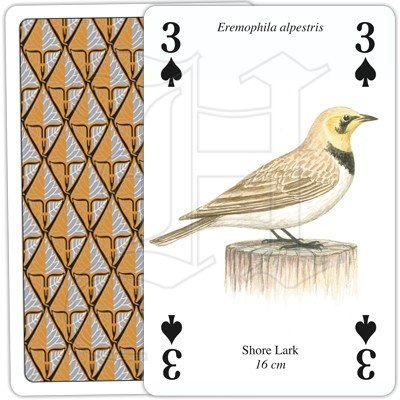 SEA AND COASTAL BIRDS PLAYING CARDS 2