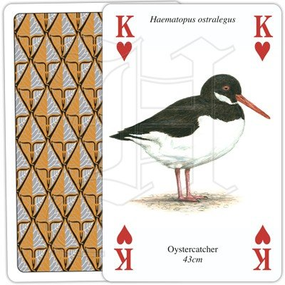 SEA AND COASTAL BIRDS PLAYING CARDS 3