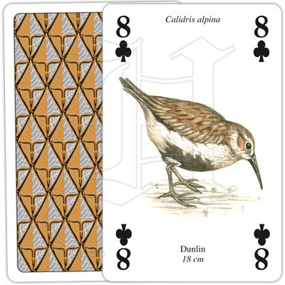 SEA AND COASTAL BIRDS PLAYING CARDS 4